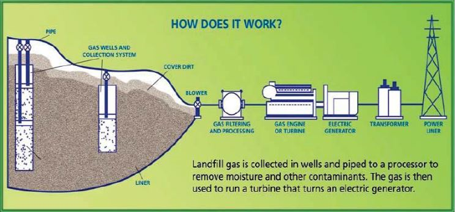 Landfill%20gas%20production.png